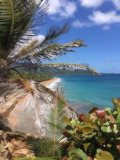 Maunabo, Puerto Rico :)
