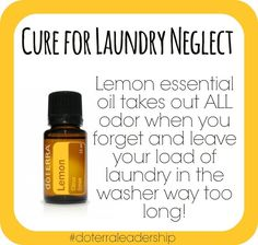 Do you ever forget and leave your laundry in the wash too long?  I know I do.  Simply add 2-3 drops to the laundry and re-wash.  And voila, laundry is as good as new!  Not only does it smell fresh and clean, but it IS fresh and clean thanks to lemon essential oil being antifungal, antibacterial, and antiviral.