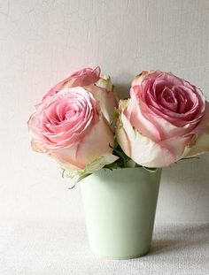 Pink roses in a light green vase