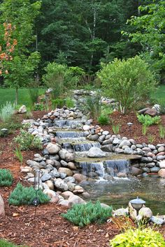waterfall landscaping Landscape Traditional with aquatic bark mulch grass