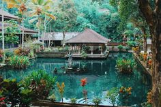 Temple... In Ubud, Bali