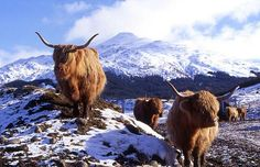 Scotland - Highlands