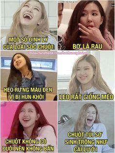 Blackpink Memes, Funny Kpop Memes, Blackpink Funny, V Cute, Park Chaeyoung, Chipmunks, Funny Moments, Cute Girls, Haha