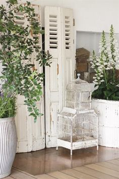 So love these vintage white french shutters ... absolutely gorgeous