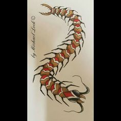 Centipede, traditional style.  #michaellock69 #sketching #drawing #traditionaltattoo #neotraditional #traditional #trad_tattooflash #trad_tattoos #trflash #blacklines #brightandbold #bright_and_bold #darkartists #blacklines #trad #neotradtattoo #centipede #centipedetattoo #oldschool #tradtattoo