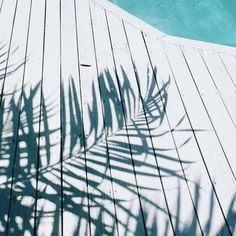 Poolside vibes // via Bloesem Blogs