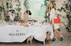 Cara Delevigne and mutts for Mulberry #dogs #cute #fashion #doglovers #style