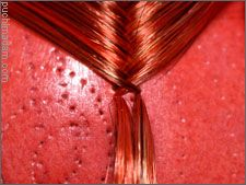 Hair – Rerooting – Thatching and Finishing