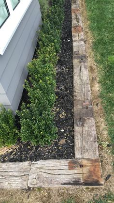 Landmark Homes Showhome. Hedge Railway Sleeper Edging