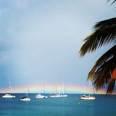 Even the rainbows are more magical in Martinique