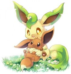 eevee and leafeon