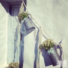 | Little Gentleman | Baby Christenning Baptism | Η βάπτιση του μικρού Γιώργου | Little Gentleman, Mint Color, Plant Hanger, Christening, Plants, Wedding, Instagram, Mary, Decoration