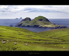 Puffin Island, Co. Kerry Ireland http://t.co/XBY0gi0QvF