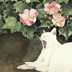 Next theme: MIDORI YAMADA (Thanks for all your pins today . I hope you enjoyed that artist. Japanese Art Modern, Japanese Cat, Art And Illustration, Illustrations, Asian Cat, Animal Gato, Cat Plants, Serpentina, Watercolor Cat