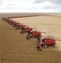 Is this heaven Case Ih Tractors, Big Tractors, Farmall Tractors, Red Tractor, John Deere Tractors, Old Farm Equipment, Heavy Equipment, International Tractors, International Harvester