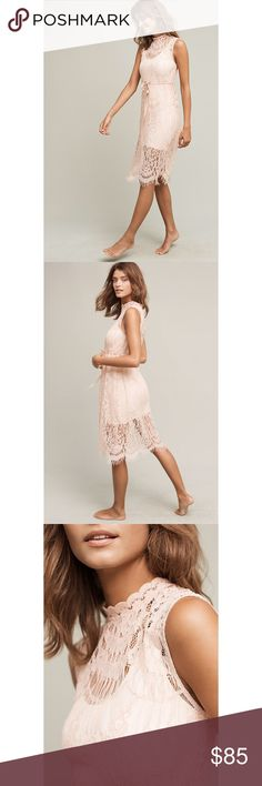 Anthro Engracia Lace Slip Anthropologie Engracia Lace Slip. Soft pink / blush color. Note that this is just the lace slip (you will need to layer a solid slip under it like in photos for wearing). Gorgeous high neck and pretty midi / just below the knee length. Anthropologie Dresses Midi