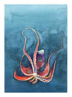 OCTOPUS ART PRINT watercolor octopus painting by SignedSweet