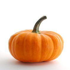 montessori workjobs: montessori nomenclature FREE Parts of a Pumpkin 3 part cards & book
