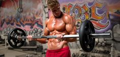 Bodybuilding.com - How To Build Monster Arms - I don't necessarily agree with everything in this article, but I do like that it suggests lifting in the various rep ranges, altering the weights to reach failure at different reps, and different grips to use.