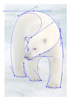 Reference-screengrab Polar Bear logo
