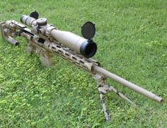 Custom rifle in Eliseo Chassis
