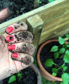 Bien sûr que vous n'êtes pas nuls! Mais voici quelques conseils destinés aux jardiniers débutants, pour vous permettre de démarrer votre projet en un rien de temps!