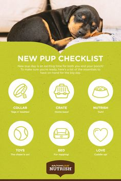 Looking for the best in natural dog and cat food? Real ingredients naturally make Rachael Ray Nutrish delicious. Find the recipe right for your pet! Dog Care Tips, Pet Care, Frozen Dog Treats, Dog Health Tips, Natural Dog Food, Nutrition, Dachshund Love, Shelter Dogs, New Puppy
