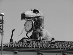 dinosaurs don't like Time
