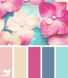 flora refresh - peach and blue?! With a dash of pink?? YES please!!
