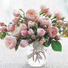English roses and buds! This arrangement incorporates both buds and blooms of 'The Generous Gardner'. How to grow, care for, and arrange the beloved blossoms of English roses.