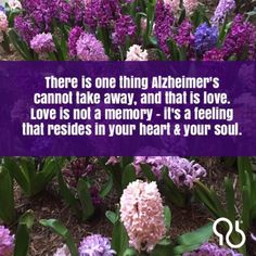 Alzheimers Quotes, Alzheimer's Prevention, Dementia Awareness, The Long Goodbye, Touching You, The Cure, Memories, Alz Org, Feelings