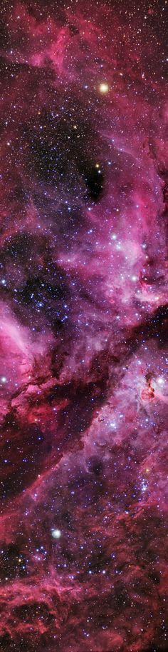 The Carina Nebula. Nebula of Stars - The Red / Pink Colors Indicate the Presence of Hydrogen Gas - Long, Tall, Vertical Pins
