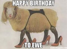 Meme: Happy BirtHday To ewe. Make a new meme with the sexy sheep meme generator, or browse sexy sheep memes already made. (41132)