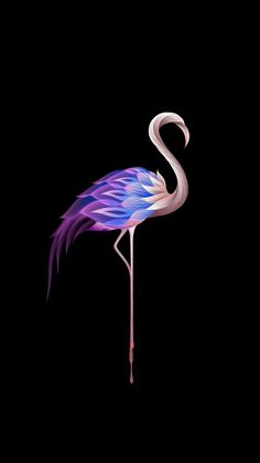 iPhone Wallpaper - A strangely colourful flamingo on a black background. The colours include blues. Wallpaper For Your Phone, Apple Wallpaper, Animal Wallpaper, Black Wallpaper, Cool Wallpaper, Mobile Wallpaper, Flamingo Wallpaper, Flamingo Art, Galaxy Wallpaper