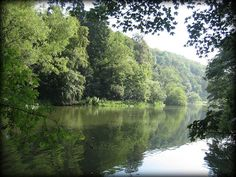 The lake in the Golden Valley in Gloucestershire where Sophie Neville's book 'Funnily Enough' is set.