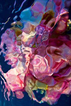 Gilles Ben Simon flowers under water