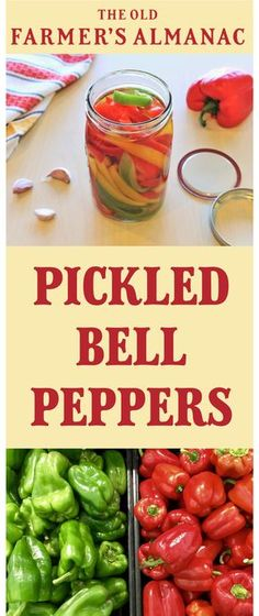 Pickled Peppers Pickling peppers is easy! When you only have a few peppers, this Pickled Peppers recipe will do nicely. Just grab some white vinegar and go! How To Pickle Peppers, Pickling Peppers, Home Canning Recipes, Cooking Recipes, Healthy Recipes, Canning 101, Tuna Recipes, Pizza Recipes, Kitchen