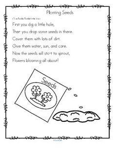 """***FREE***   This is a Spring-themed song/rhyme about """"Planting Seeds"""", plus a set of sequence cards to illustrate the rhyme. Each of the cards goes with a line of the rhyme. Print them on cardstock and cut them out. The cards are numbered. 2 pages"""