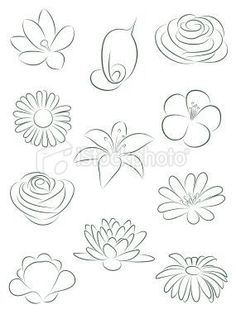 Flower Inspiration- These flowers are so beautifully drawn and are perfect to inspire me to do the same.
