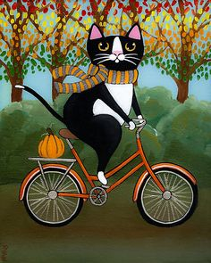 Cat on a Bicycle  by Ryan Conners | redbubble.com