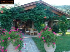 5 visitors have checked in at Apraos. Luxury Suites, See Photo, Four Square, Studios, Patio, Canning, Outdoor Decor, Plants, Home Decor