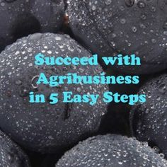 Michigan Agriculture: Succeed with Agribusiness in 5 Easy Steps! #DIY #agedu