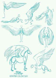 Animal Drawings, Cool Drawings, Drawing Sketches, Drawing Tips, Drawing Ideas, Sketching, Fantasy Drawings, Wings Drawing, Drawing Base