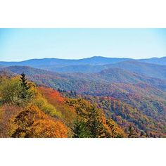 Autumn will be here in no time! Have you planned your trip to the mountains? Click the link in our bio for things to do and sights to see during your next visit. #travel #smokymountains #fall #nature #fallcolors #visitsmokies #autumn