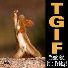 Thank God it's Friday! Rock on!