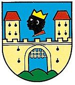Coat of Arms of the Statutory Waidhofen an der Ybbs (Lower Austria) European History, Art History, European Flags, History Articles, Black Royalty, Black Jesus, African Royalty, Black History Facts, Black Families