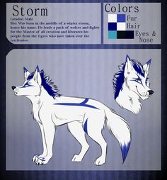 Storm reference sheet by Storm-Cwalker.deviantart.com on @DeviantArt