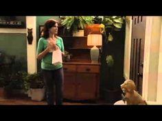 Filme Amor por Acidentei. Dub - YouTube