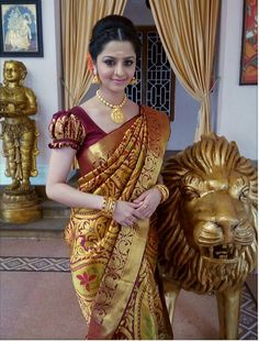 Vedhika in South Indian Costume.