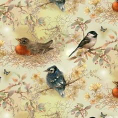 Garden Melodies - Birds Among Blossoms - Quilt Fabrics from www.eQuilter.com